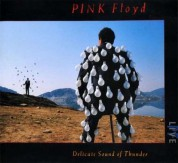 Pink Floyd: Delicate Sound of Thunder: Live - Plak