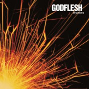 Godflesh: Hymns - Plak