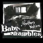 Babyshambles: Shotter's Nation - CD