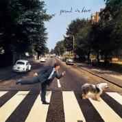 Paul McCartney: Paul Is Live (Baby Blue / Peachy White Vinyl) - Plak
