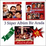 Çeşitli Sanatçılar: Ankara Oyun Havaları - CD