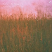 Nostalgia 77 Octet: Everything Under the Sun - CD