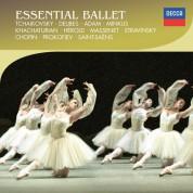 Çeşitli Sanatçılar: Essential Ballet - Tchaikovsky; Delibes; Adam; Minkus - Vari - CD