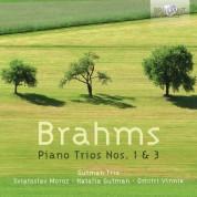 Gutman Trio: Brahms: Piano Trios Nos. 1 & 3 - CD