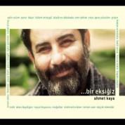 Ahmet Kaya, Çeşitli Sanatçılar: Bir Eksiğiz - CD