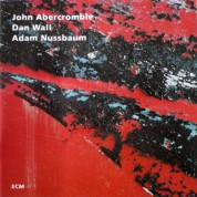 John Abercrombie, Dan Wall, Adam Nussbaum: While We're Young - CD