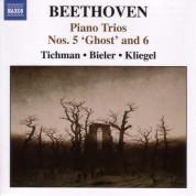 Xyrion Trio: Beethoven, L. Van: Piano Trios, Vol. 1 - Piano Trios Nos. 5, 6, 10 - CD