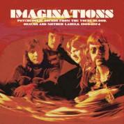 Çeşitli Sanatçılar: Imaginations - Plak