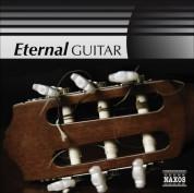 Çeşitli Sanatçılar: Guitar (Eternal) - CD