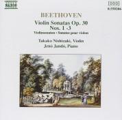 Takako Nishizaki, Jenö Jandó: Beethoven: Violin Sonatas Nos.6, 8 - CD