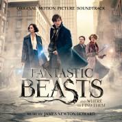 Çeşitli Sanatçılar: Fantastic Beasts (Soundtrack) - CD