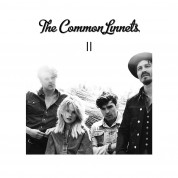 Common Linnets: II - Plak