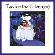 Cat Stevens: Tea For The Tillerman 2 - Plak