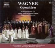 Leif Segerstam: Wagner, R.: Opera Choruses - CD