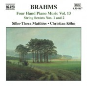 Christian Kohn, Silke-Thora Matthies: Brahms: Four-Hand Piano Music, Vol. 13 - CD