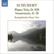 Schubert: Piano Trio No. 2 in E Flat Major - Sonatensatz - CD