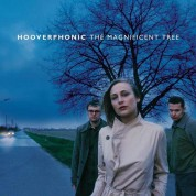 Hooverphonic: Magnificent Tree - Plak