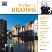 Çeşitli Sanatçılar: Brahms (The Best Of) - CD