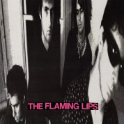 The Flaming Lips: In A Priest Driven Ambulance - Plak