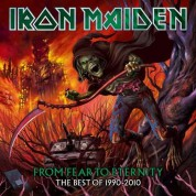 Iron Maiden: From Fear To Eternity: The Best Of 1990-2010 (Picture Disc) - Plak