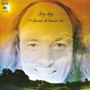 Terry Riley: A Rainbow In Curved Air - Plak