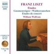 Liszt: 2 Concert Etudes / 3 Etudes De Concert / Mazeppa - CD