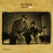Taj Mahal: Labor Of Love (Limited Edition) - Plak