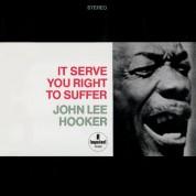 John Lee Hooker: It Serve You Right To Suffer - Plak