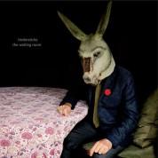 Tindersticks: The Waiting Room - Plak
