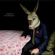 Tindersticks: The Waiting Room - Plak