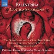 Munich Palestrina Ensemble: Palestrina: Cantica Salomonis - CD