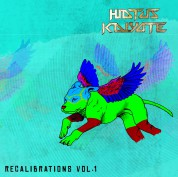 Hiatus Kaiyote: Recalibrations Vol. 1 - Plak