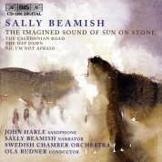 Swedish Chamber Orchestra, Ola Rudner: Beamish: The Imagined Sound of Sun on Stone - CD