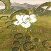 Yes: Symphonic Live - Plak