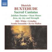 Buxtehude: Sacred Cantatas - CD