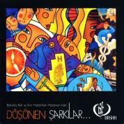 Çeşitli Sanatçılar: Düşünen Şarkılar - CD