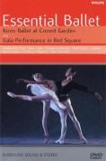 Alexander Sotnikov, Kirov Orchestra, Moscow Radio Symphony Orchestra, Viktor Fedotov, Valery Gergiev: Essential Ballet Kirov Orchestra - DVD