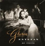 Gloria Estefan: Mi Tierra - Plak