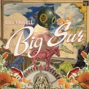 Bill Frisell: Big Sur - Plak