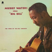 Muddy Waters: Sings Big Bill Broonzy - Plak
