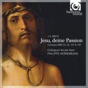 Collegium Vocale Gent, Philippe Herreweghe: J.S. Bach: Jesu, deine Passion - CD