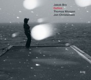 Jakob Bro Trio: Gefion (LP) - Plak
