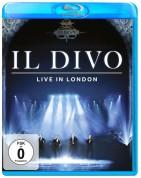 Il Divo: Live In London 2011 - DVD