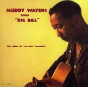 Muddy Waters: Sings Big Bill Broonzy - Plak