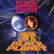 Public Enemy: Fear Of A Black Planet - Plak
