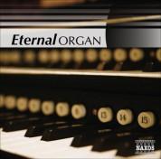 Çeşitli Sanatçılar: Organ (Eternal) - CD