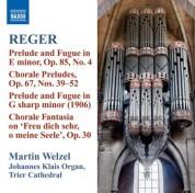 Martin Welzel: Reger: Organ Works, Vol. 10 - CD
