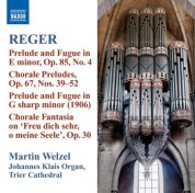 Martin Welzel: Reger: Organ Works, Vol. 10 - CD