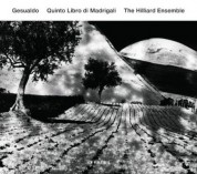 The Hilliard Ensemble: Gesualdo: Quinto Libro Di Madrigali - CD