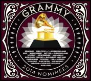 Çeşitli Sanatçılar: Grammy Nominees 2014 - CD